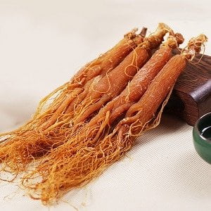 ginseng rosso